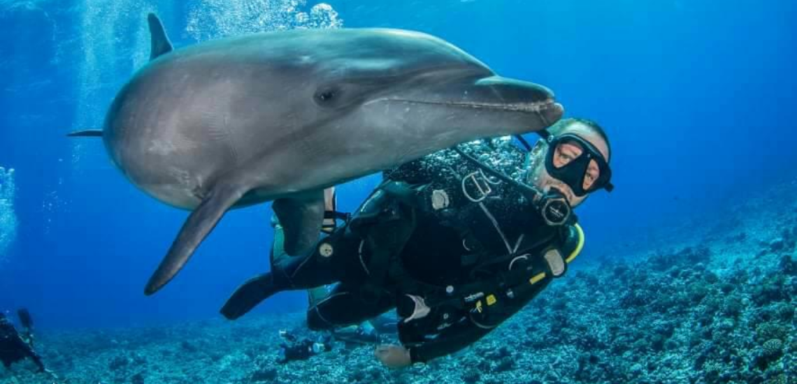 https://tahititourisme.kr/wp-content/uploads/2017/08/Archimedeexpeditionsphotocouverturure_1140x550px.png