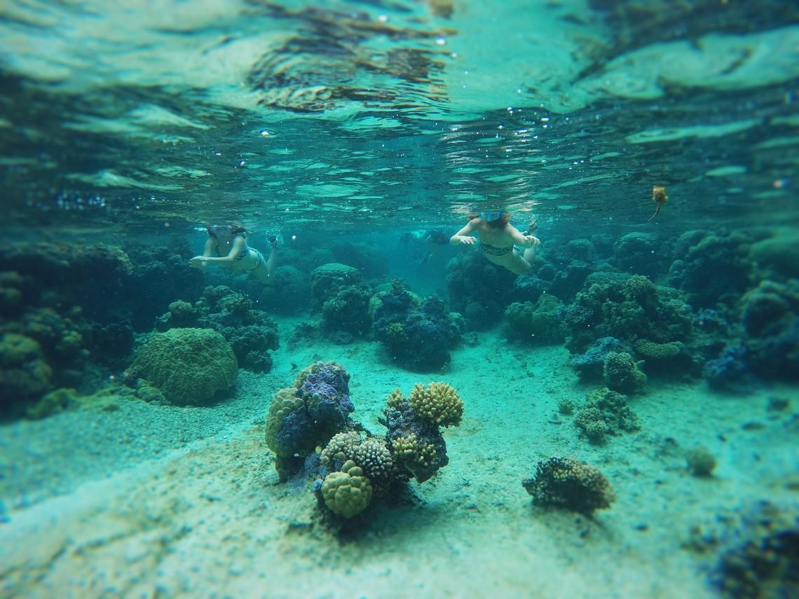 https://tahititourisme.kr/wp-content/uploads/2017/08/Bora-Bora-Reef-Discovery-2.jpg