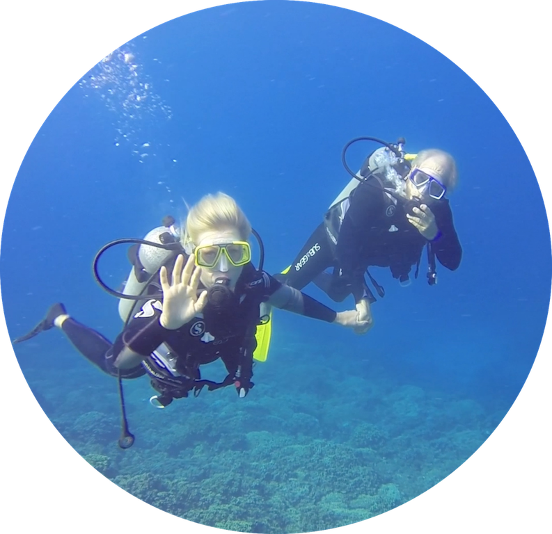 https://tahititourisme.kr/wp-content/uploads/2017/08/Divers-in-the-first-try.png