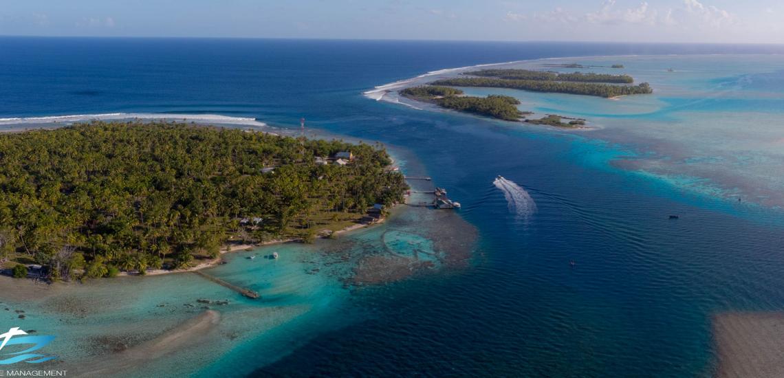 https://tahititourisme.kr/wp-content/uploads/2017/08/Tahiti-Dive-Management.png