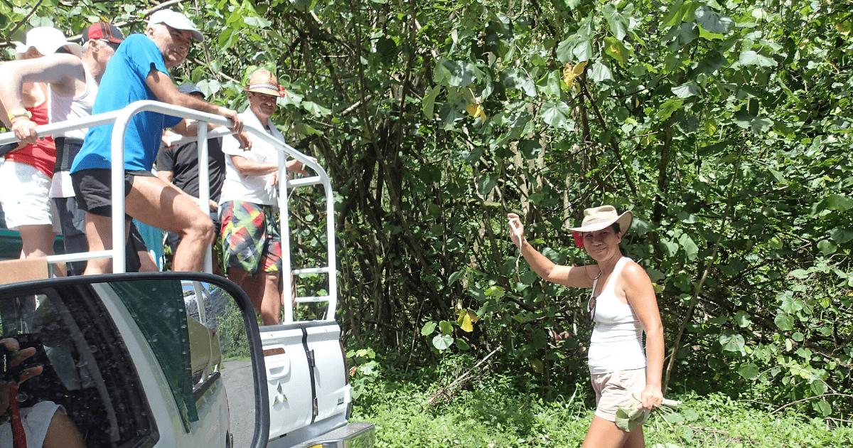 https://tahititourisme.kr/wp-content/uploads/2017/08/Tahiti-Safari-Expeditions_1140x500-min.png