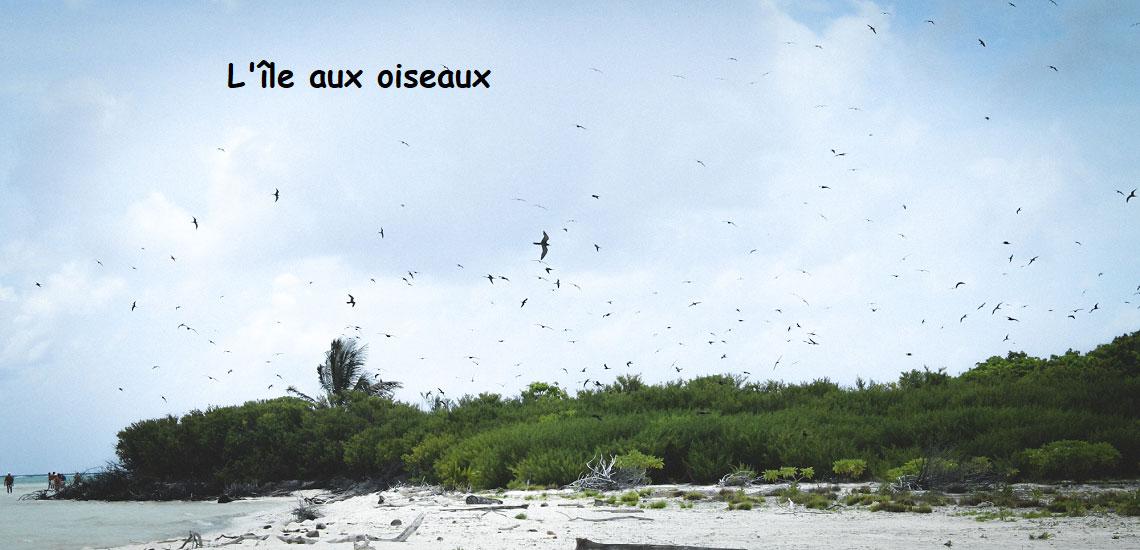 https://tahititourisme.kr/wp-content/uploads/2017/08/Tahiti-Voile-et-Lagon-photo-de-couv-2.jpg