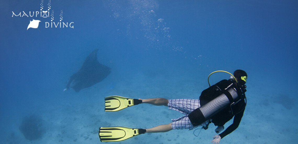 https://tahititourisme.kr/wp-content/uploads/2017/08/maupitidiving_1140x5503.png