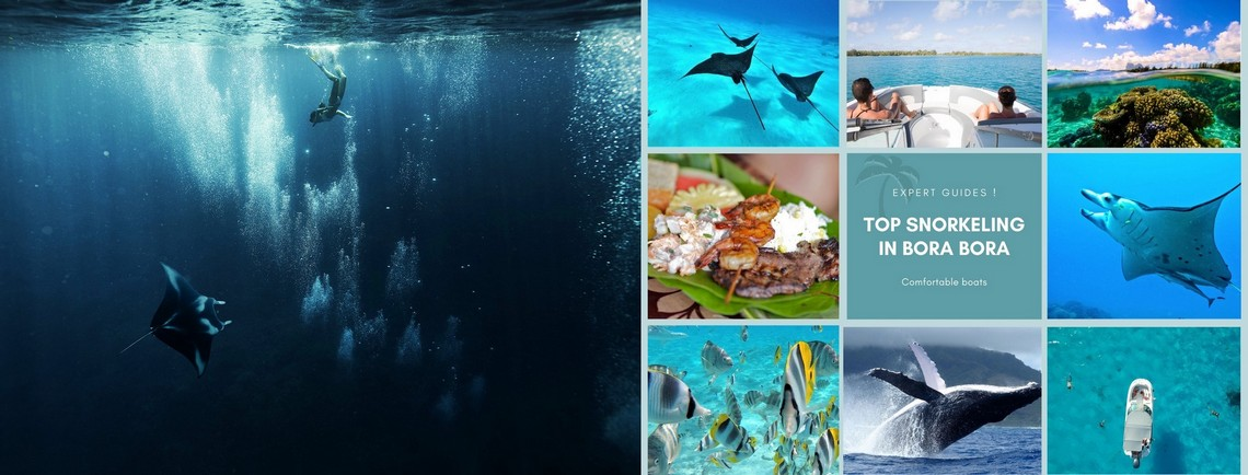 https://tahititourisme.kr/wp-content/uploads/2017/08/reef-discovery-bora-bora.jpg
