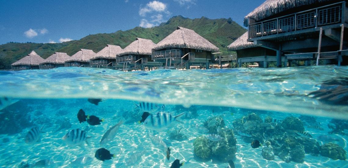 https://tahititourisme.kr/wp-content/uploads/2018/01/FRNT_Lagoon-1.jpg
