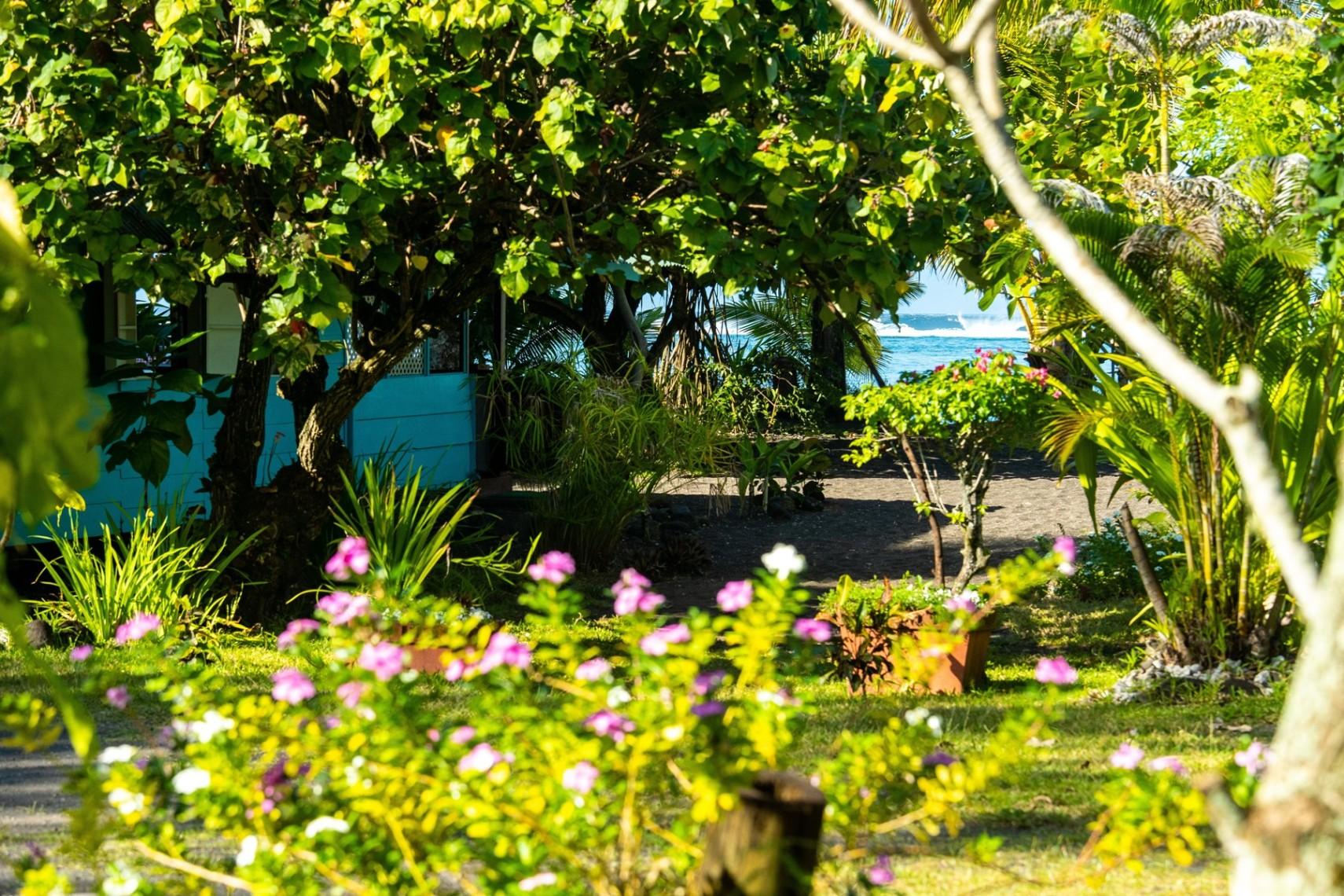 https://tahititourisme.kr/wp-content/uploads/2019/08/copie-tahiti-tourisme-800ko-1.jpg
