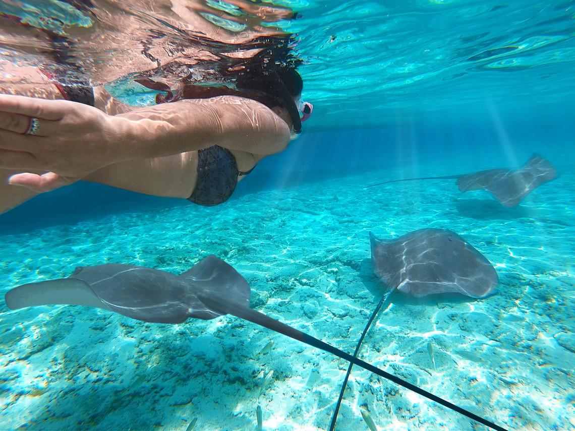 https://tahititourisme.kr/wp-content/uploads/2020/11/Lagoon-Srvice-Bora-Bora-2.jpg