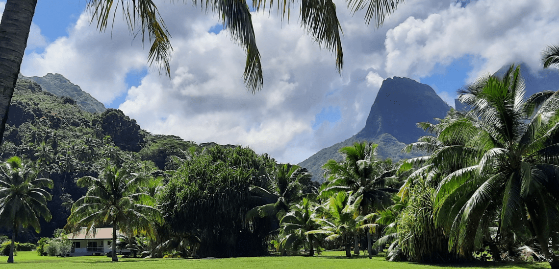 https://tahititourisme.kr/wp-content/uploads/2021/05/residenceapaura_1140x550-1-min.png